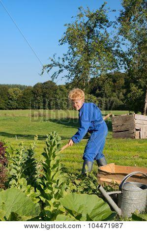 Farm boy works in the vegetable garden