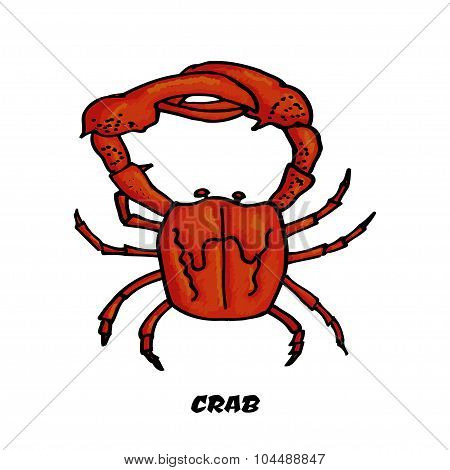 Colorful sketch crab as a design element