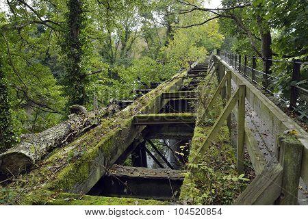 Lower Lydbrook Railway Bridge