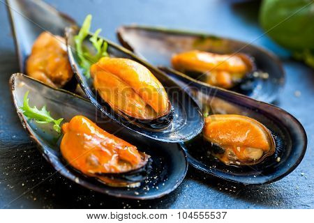 Fresh Steamed Sea Mussels.
