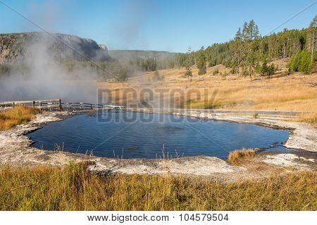 Terrace Springs