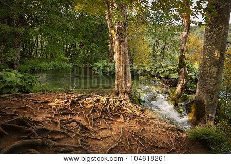 Waterfall in Plitvice Lakes National Park, Croatia