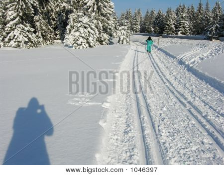 Cross Country Tracks
