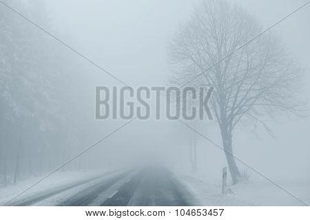 Foggy Winter Road