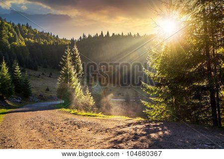 Mountain Road Near The Coniferous Forest With Cloudy Morning Sky