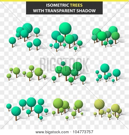 Set 3D trees in isometry and transparent shadow. Isometric tree