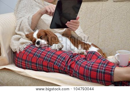 Lady Holding Tablet And Cavalier Dog