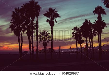 Sunset Colors With Palms Silhouettes In Santa Monica, Los Angeles