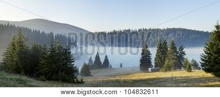 Forest lake covered in mist at dawn in the coniferous forest in the Rhodope mountains (Rhodopes Bulgaria)