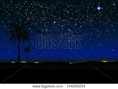 Nights sky with stars and palm trees in silhouette