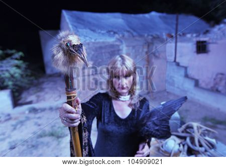 Blond Witch With Crow Wings