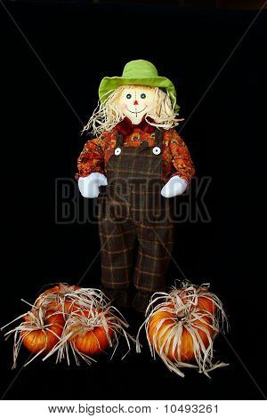 Cute Little Scarecrow with Pumpkins