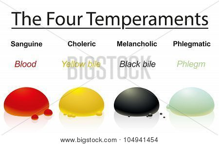Temperaments Four Humors Drops