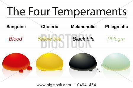 Temperaments Four Humors Drops