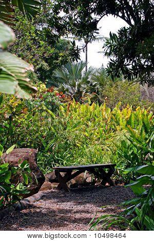 Tropical Plantation Hawaii