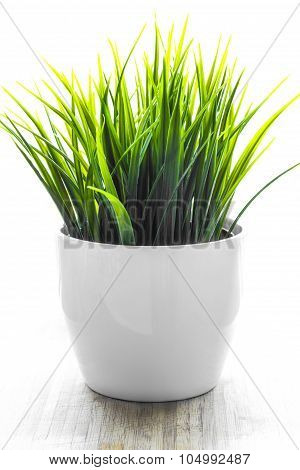 Artificial wheatgrass plant in white flower pot, backlit