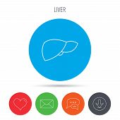 Liver icon. Transplantation organ sign. Medical hepathology symbol. Mail, download and speech bubble buttons. Like symbol. Vector poster