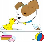 A cute puppy is having a bath with a rubber duckie poster
