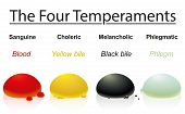Four temperaments with corresponding humors or bodily liquids- sanguine, choleric, melancholic, phlegmatic - blood, yellow bile, black bile, phlegm. Illustration over white background. poster