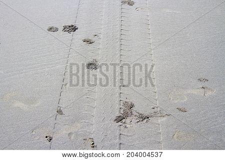 Footprint wheel on cream sand on day ligth