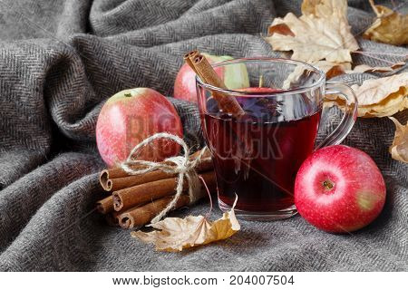 Cozy Plaid In Fall Day With Hot Alcoholic Drink Mulled Wine