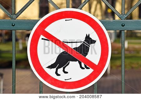 No dogs allowed sign on the metal fence of the park