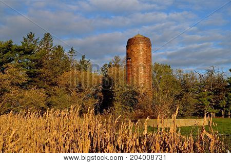 An old silo and a barn foundation remain on an old farm site which has become a cornfield with the autumn colors.
