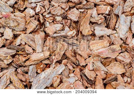 Background. Heap of fragments of pine bark with cone