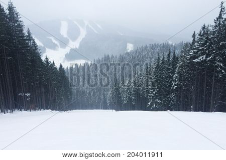 Mountains landscape with skiing tracks with space for text