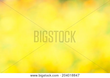 Natural yellow blurred background. Yellow bokeh on nature defocus abstract blur background. Abstract background  in yellow and green tones. Natural outdoors bokeh background in yellow and green tones
