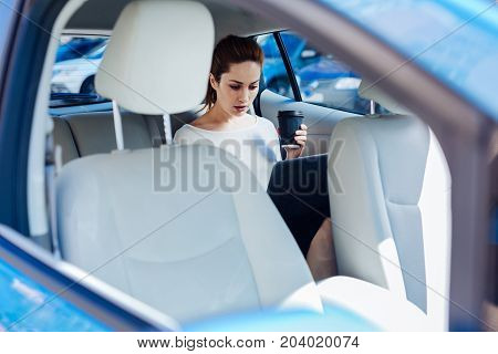 Remote work. Smart nice hard working businesswoman sitting in the car and holding a cup with coffee while working on a laptop