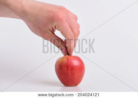 Male Hand Holds Light Red Apple. Apple On Light Background