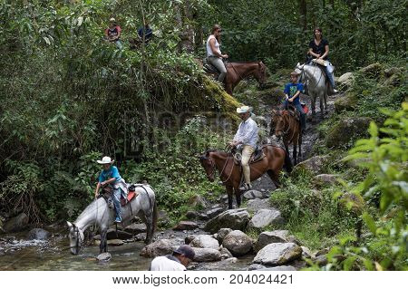 February 20 2017 Valle de Cocora Colombia: toruists riding horses in the jungle of the populr tourist destination
