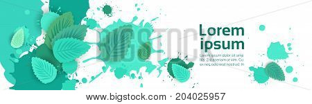 Abstract Paint Splash And Mint Leaf Set Over White Background For Copy Space And Text Flat Vector Illustration