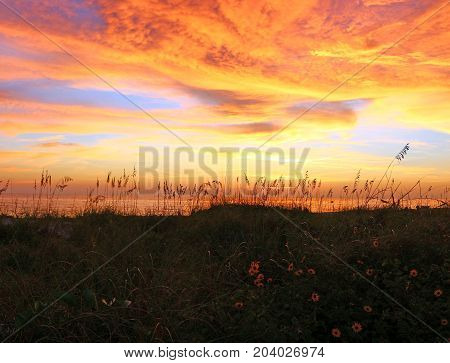 Sunset over the beach and Gulf of Mexico on an island in Florida