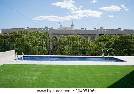 Swimming pool with the green grass in a sunny day