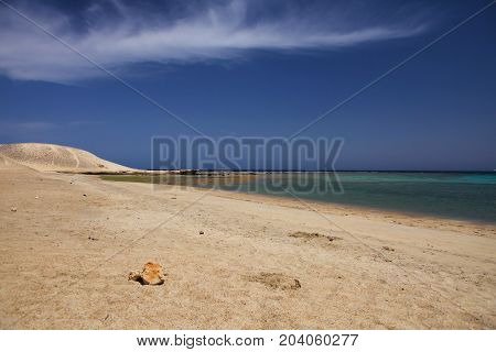 Marsa Mubarak,on of the most beautiful places in the Marsa Alam region, where can be seen Dugong (sea cow) and sea turtles