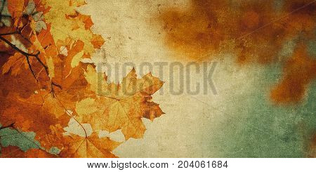 Highly detailed grunge background with autumn leaves