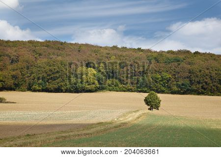 Landscape with hills fields and trees in Lower Saxony Germany.
