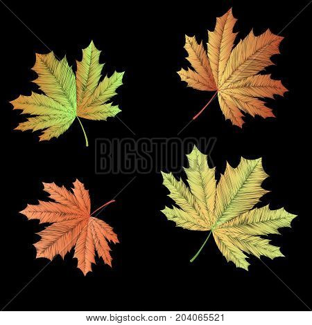 Embroidered autumn maple leaves on black background. Raster copy.