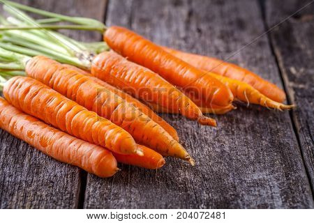 Young Carrots With A Tops On A Wooden Background, Horizontally, Copyspace
