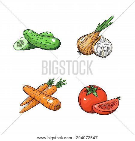 Collection set of hand drawn vegetables isolated on white background. Vector illustration of cucumber onion carrot and tomato in vintage sketch style - stock vector