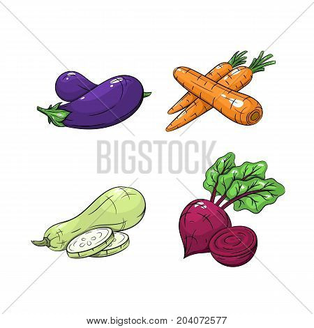 Collection set of hand drawn vegetables isolated on white background. Vector illustration of eggplant carrots zucchini and beetroot in vintage sketch style - stock vector