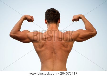 Man Or Sportsman Flexing Arms With Fists, Back View