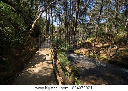hiking path through the popular Arvi park in the proximity of Medellin Colombia