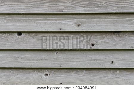 Textured pine wood lapped siding wall. Abstract background or backdrop of knotted wood.