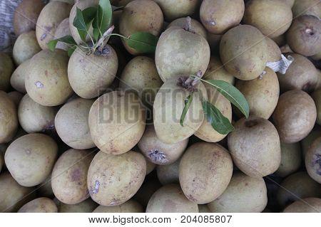 Fresh sapodilla fruits, ripe sapodilla fruit in market