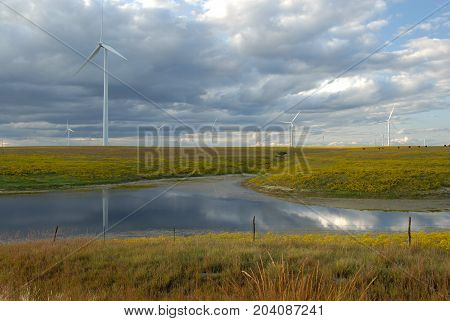 A large wind farm over looking a grazing pasture and a watering pond.