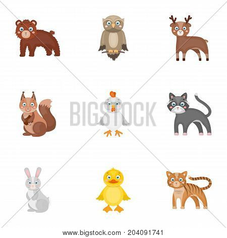 Zoo, toys, hunting and other  icon in cartoon style.Forest, nature, farm, icons in set collection.