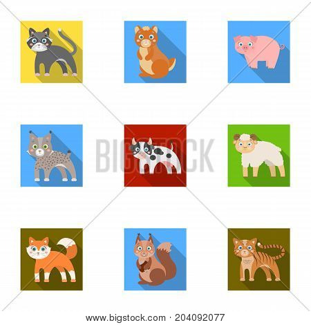 Zoo, toys, hunting and other  icon in flat style.Forest, nature, farm, icons in set collection.